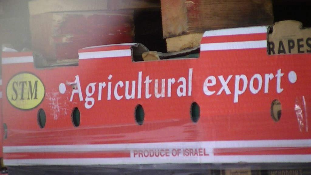 Mislabelled STM agricultural export boxes in Baqa'ot settlement in the occupied Jordan Valley