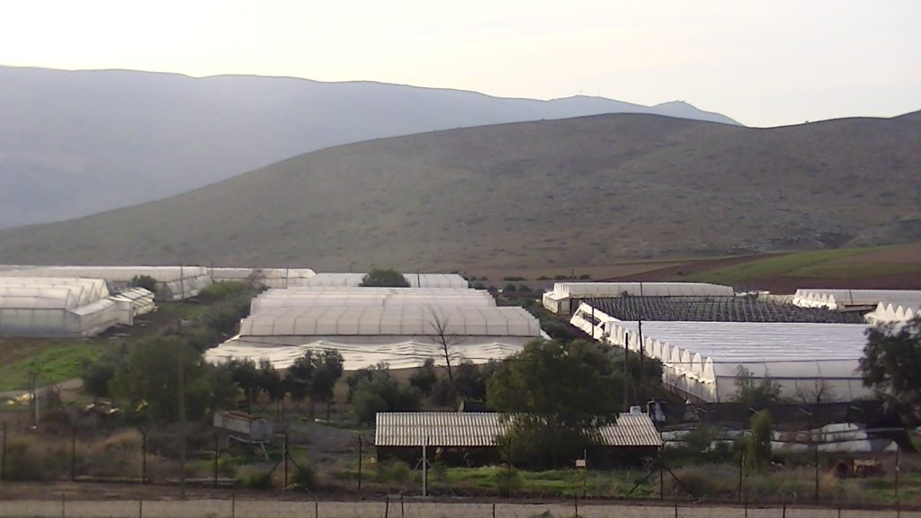 Greenhouses in Beqa'ot settlement, photo by Corporate Watch February 2013