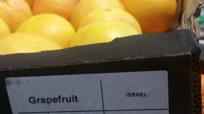 Grapefruit supplied by Israeli company Mehadrin on sale in Lidl. Photo by Corporate Occupation May 2019
